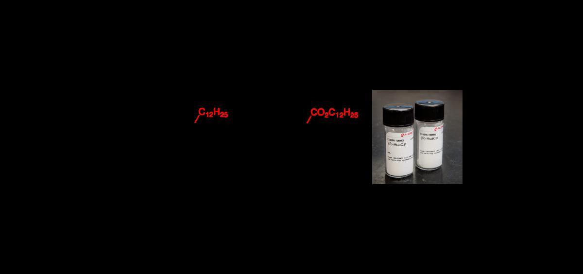 Proline sulfonamides